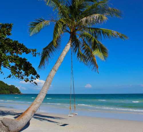 пляжи фукуока: большой обзор с фото